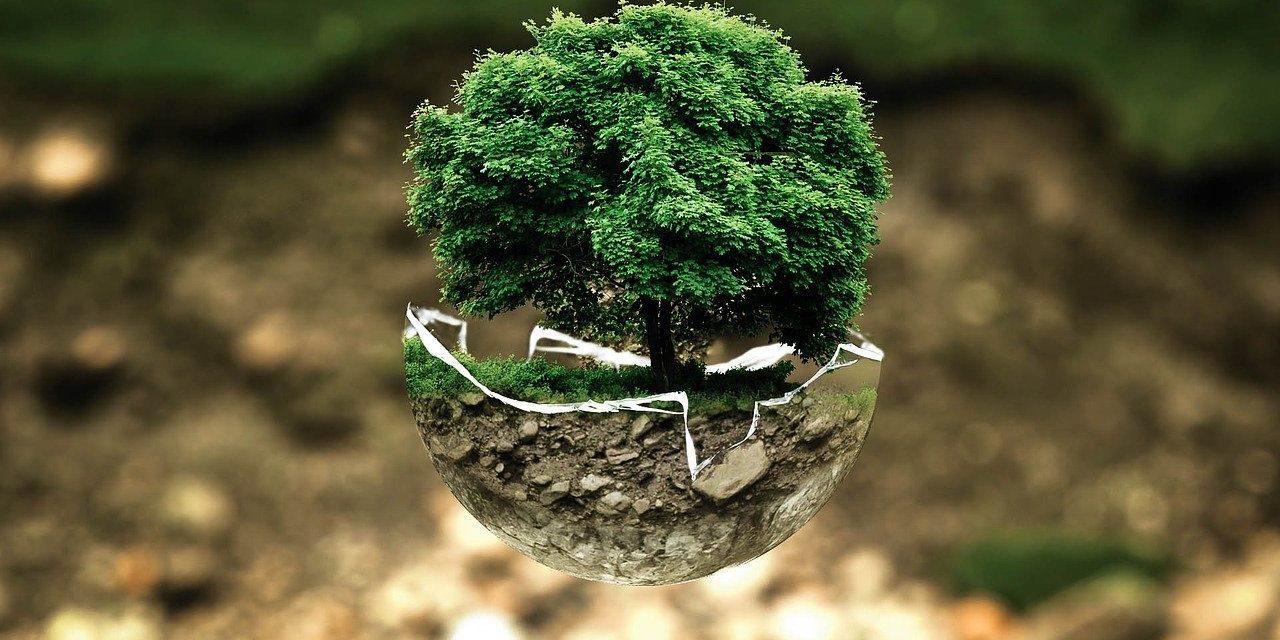 80 милиона евра за животну средину