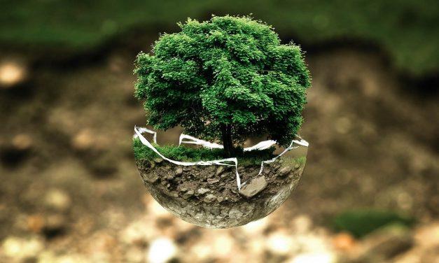 80 miliona evra za životnu sredinu