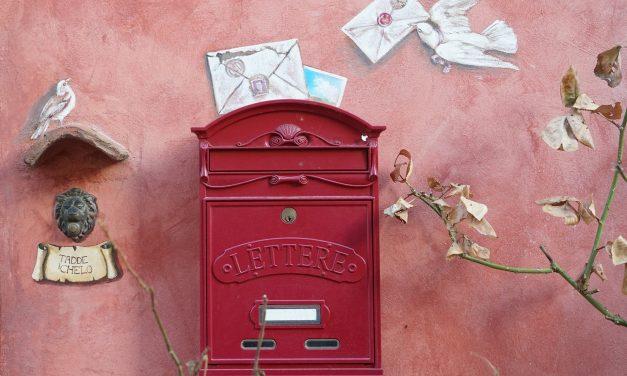 Како голуб писмоноша зна пут до куће?