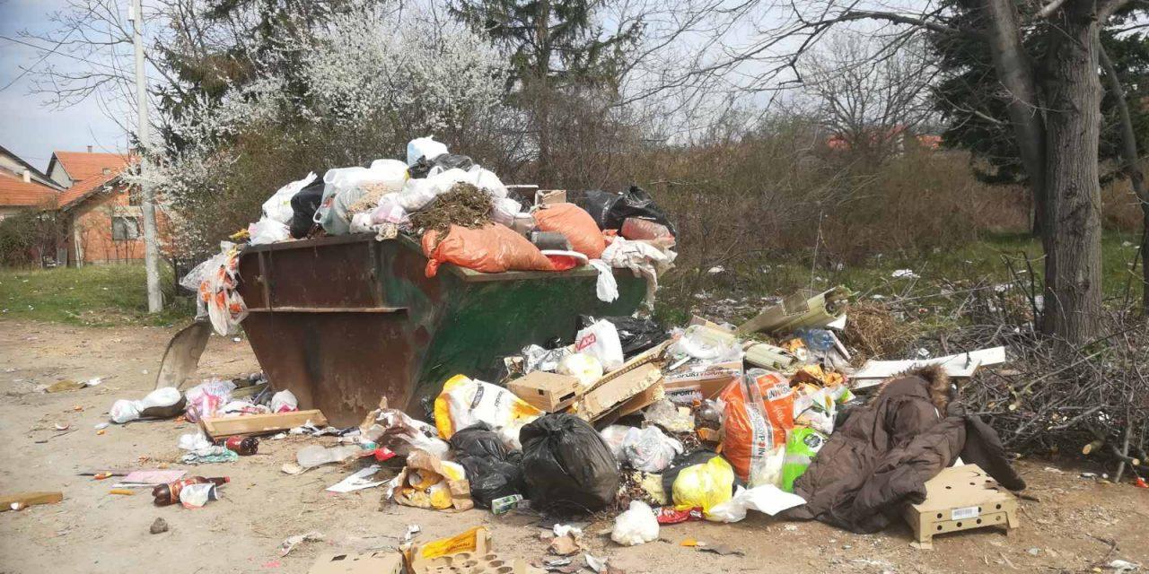Бусије у доба короне: Чистоћа је пола здравља