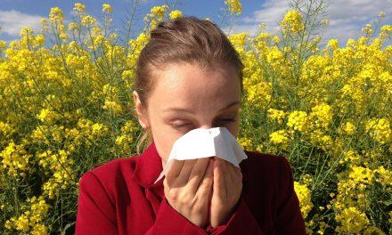 Министарство израдило апликацију о концентрацијама алергеног полена у ваздуху