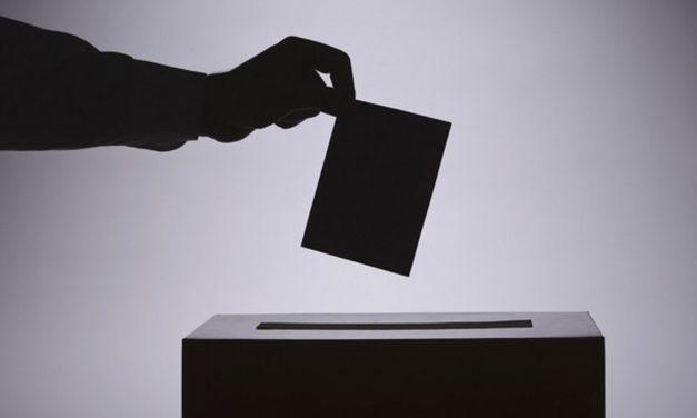 U Kostolcu sedam izbornih lista
