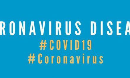Vlada Srbije napravila informacioni sistem COVID-19