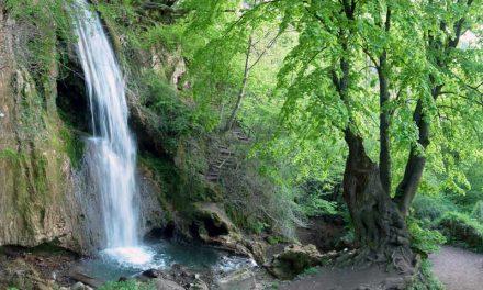 Данас се обележава Дан заштите природе