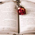 U užem izboru za Ninovu nagradu 17 romana