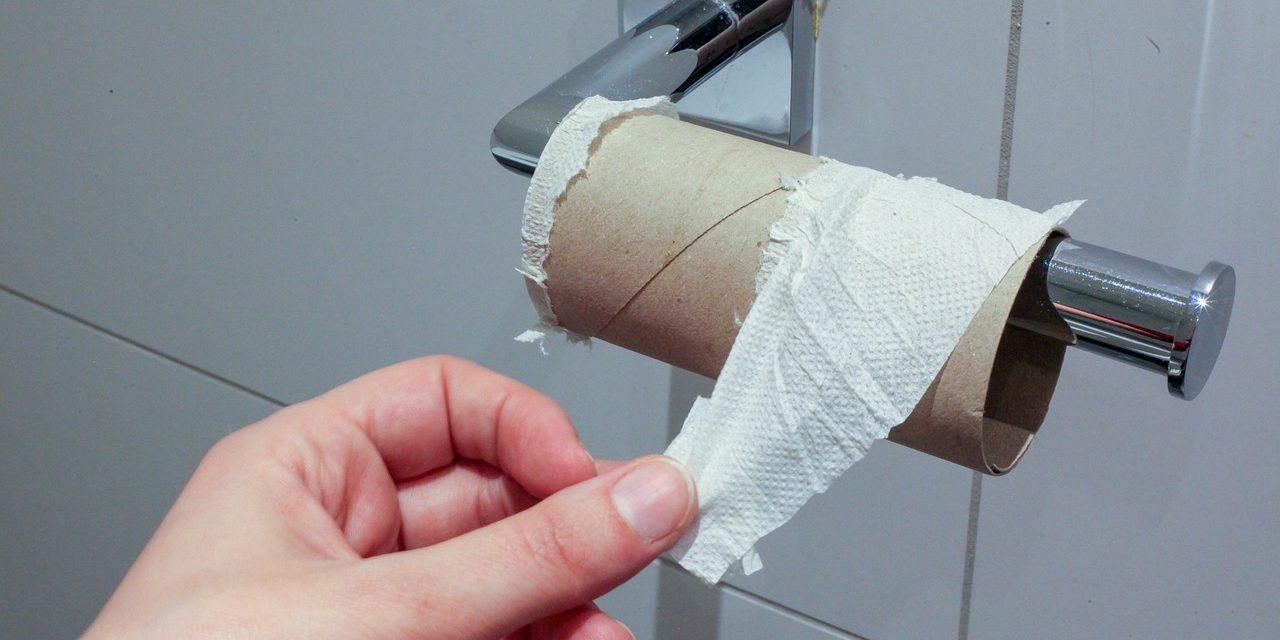 Šta su ljudi koristili pre pojave toalet papira?