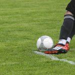 Golubac: Bez publike na fudbalskim utakmicama