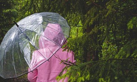 Stiže nam snažan ciklon – za jedan dan pašće više kiše nego za ceo oktobar