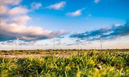 Na teritoriji Golupca, Kučeva i Velikog Gradišta u planu gradnja vetroelektrane Krivača – Imaće 22 vetrogeneratora visine do 205 m