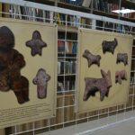 Petrovac na Mlavi: Otvorena izložba dečijih igračaka
