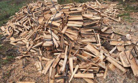 Grejanje na drva najjeftinije u Srbiji, najskuplje na struju