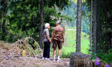 Menjaju se pravila – koji su uslovi za odlazak u penziju od naredne godine