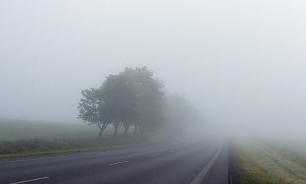 Otežan saobraćaj zbog magle, vozačima se savetetuje oprez