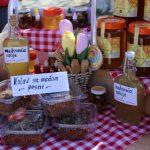"""""""Dani cveća i meda"""" obeležili početak turističke sezone u Velikom Gradištu"""