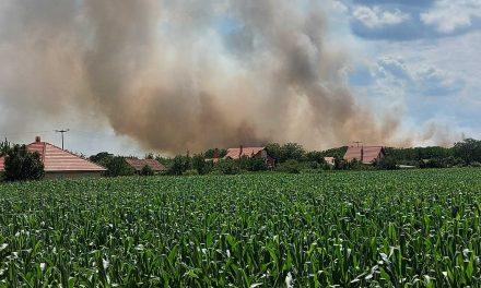 Saopštenje Gradskog odbora SSP Požarevac povodom požara na gradskoj deponiji