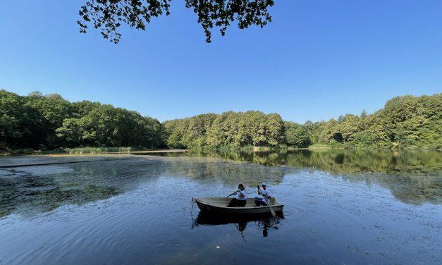 """SBB fondacija i """"Ekološka svest"""" u akciji čišćenja jezera Zaova"""